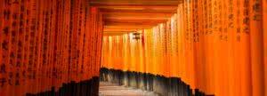 Fotokurs in Japan